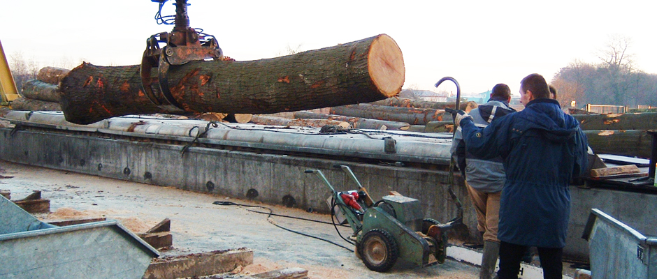LOG YARD - LENGTH CUT 1