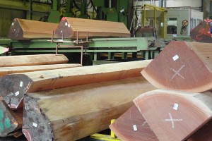 sawmill-3