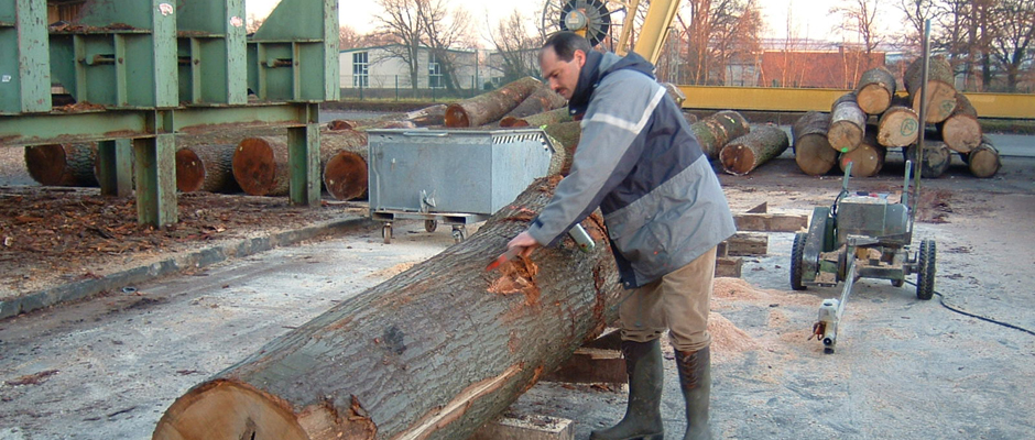 LOG YARD - LENGTH CUT OAK