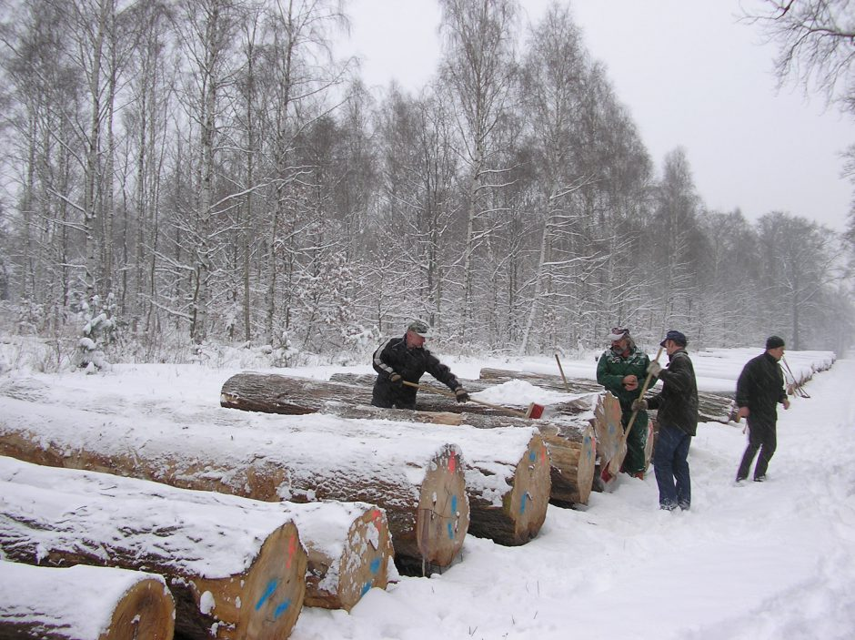 Log inspection 2